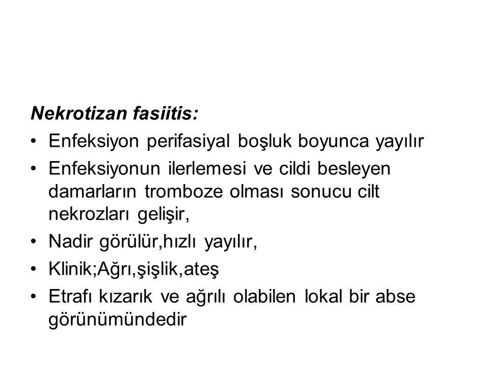 Nekrotizan fasiitis: Enfeksiyon perifasiyal boşluk boyunca yayılır.