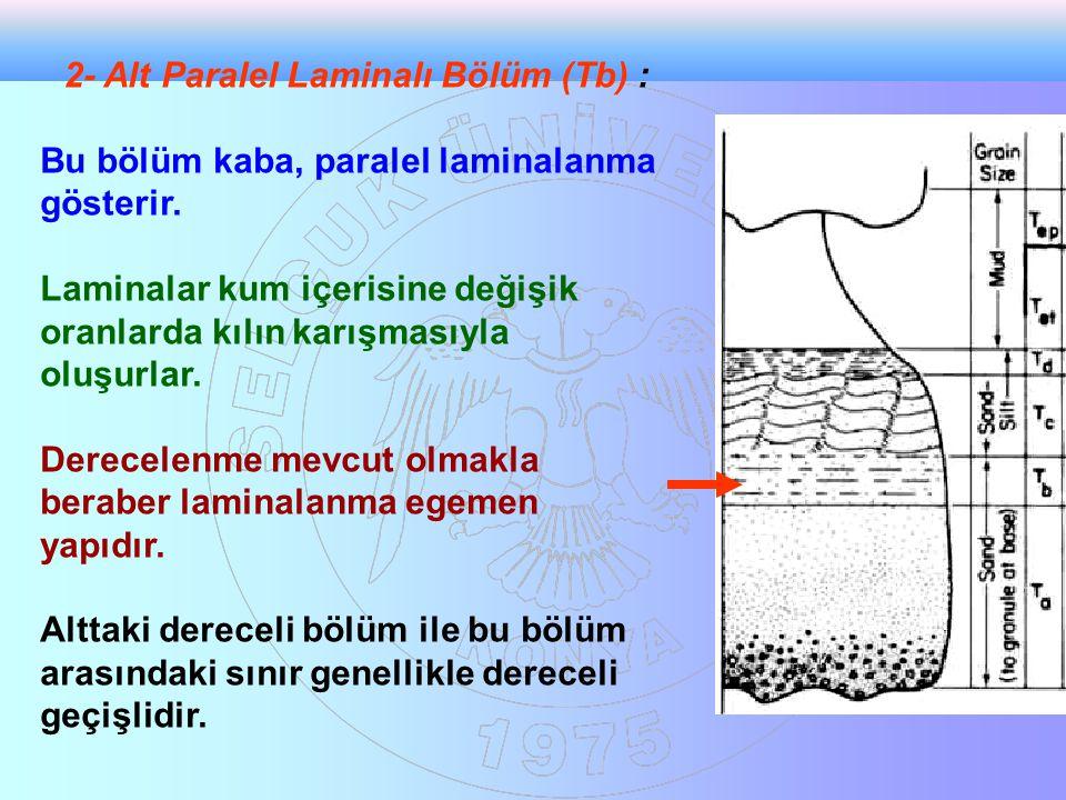 2- Alt Paralel Laminalı Bölüm (Tb) :