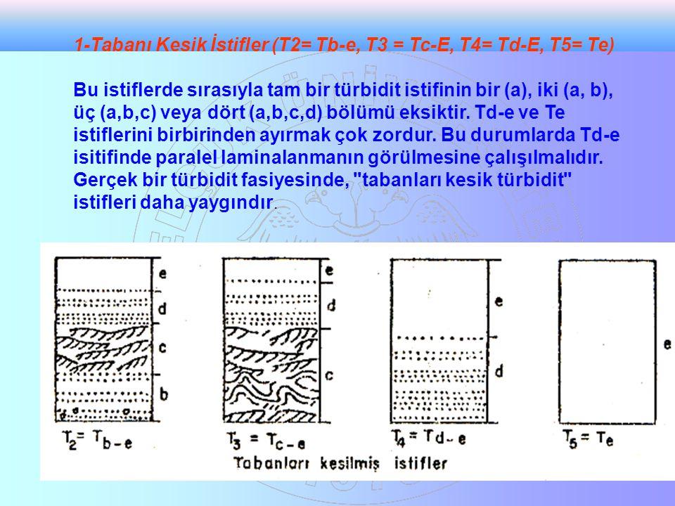 1-Tabanı Kesik İstifler (T2= Tb-e, T3 = Tc-E, T4= Td-E, T5= Te)