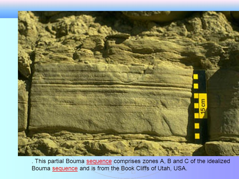 . This partial Bouma sequence comprises zones A, B and C of the idealized Bouma sequence and is from the Book Cliffs of Utah, USA.
