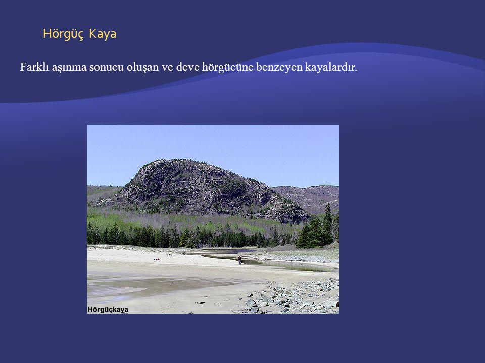 Hörgüç Kaya Farklı aşınma sonucu oluşan ve deve hörgücüne benzeyen kayalardır.