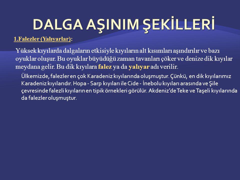 DALGA AŞINIM ŞEKİLLERİ