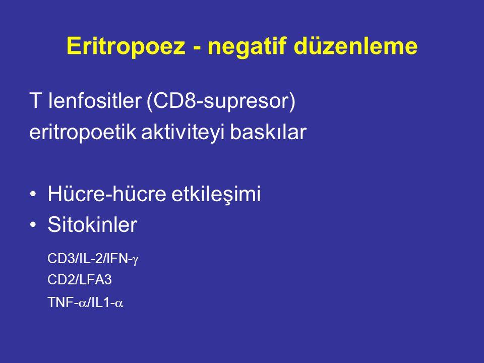 Eritropoez - negatif düzenleme