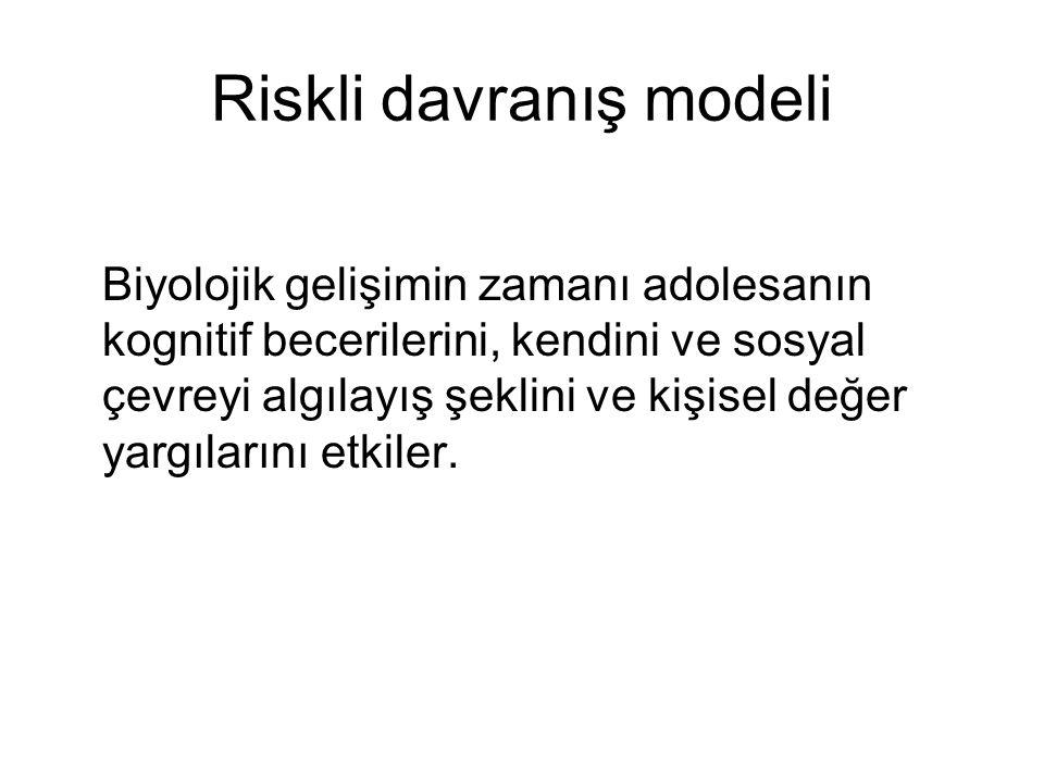 Riskli davranış modeli
