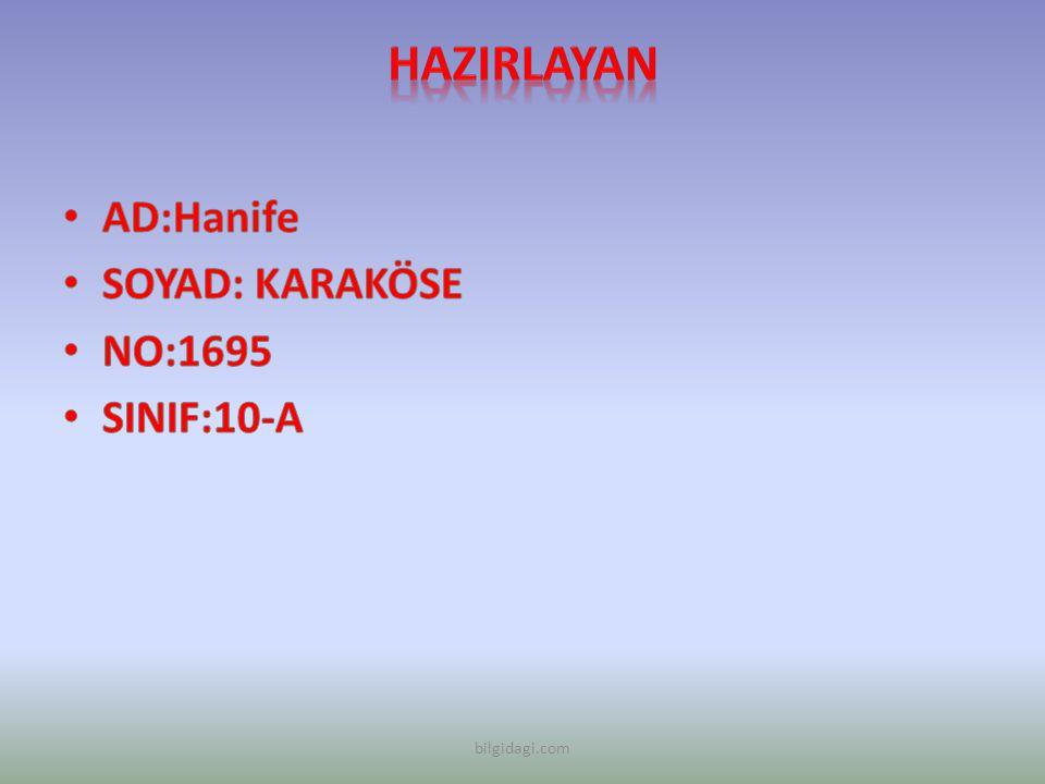 HAZIRLAYAN AD:Hanife SOYAD: KARAKÖSE NO:1695 SINIF:10-A bilgidagi.com