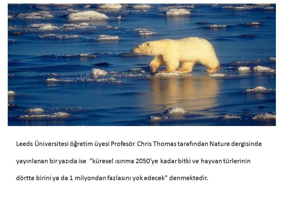 Leeds Üniversitesi öğretim üyesi Profesör Chris Thomas tarafından Nature dergisinde yayınlanan bir yazıda ise küresel ısınma 2050'ye kadar bitki ve hayvan türlerinin dörtte birini ya da 1 milyondan fazlasını yok edecek denmektedir.