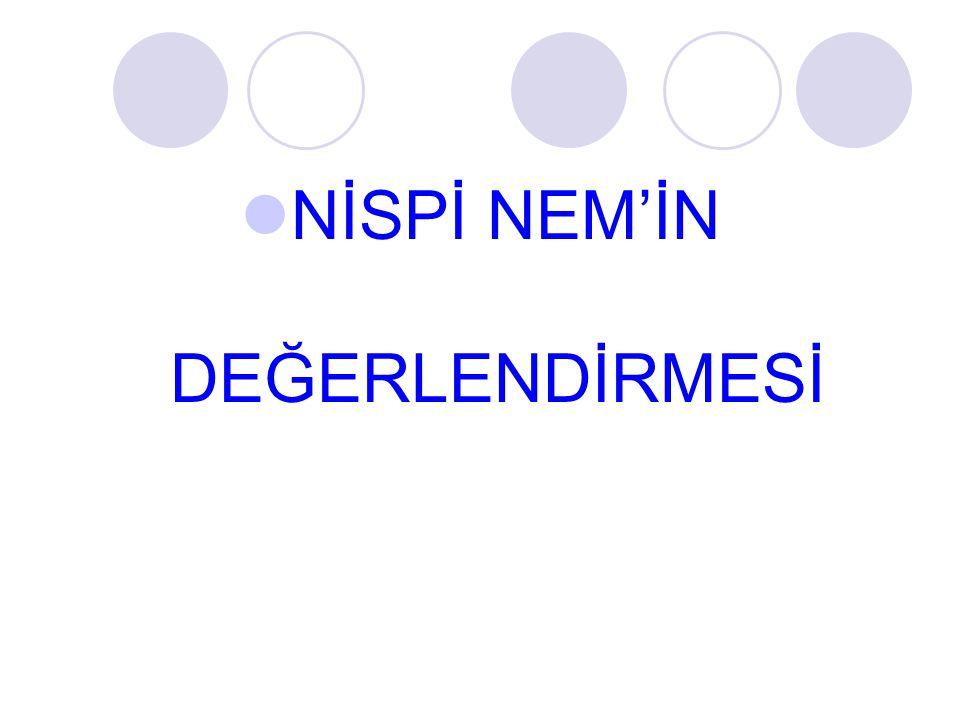 NİSPİ NEM'İN DEĞERLENDİRMESİ