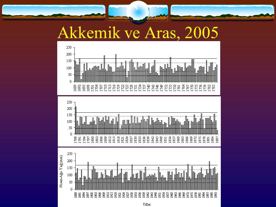 Akkemik ve Aras, 2005
