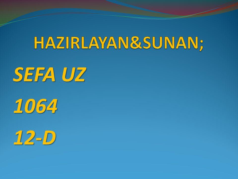 HAZIRLAYAN&SUNAN; SEFA UZ 1064 12-D