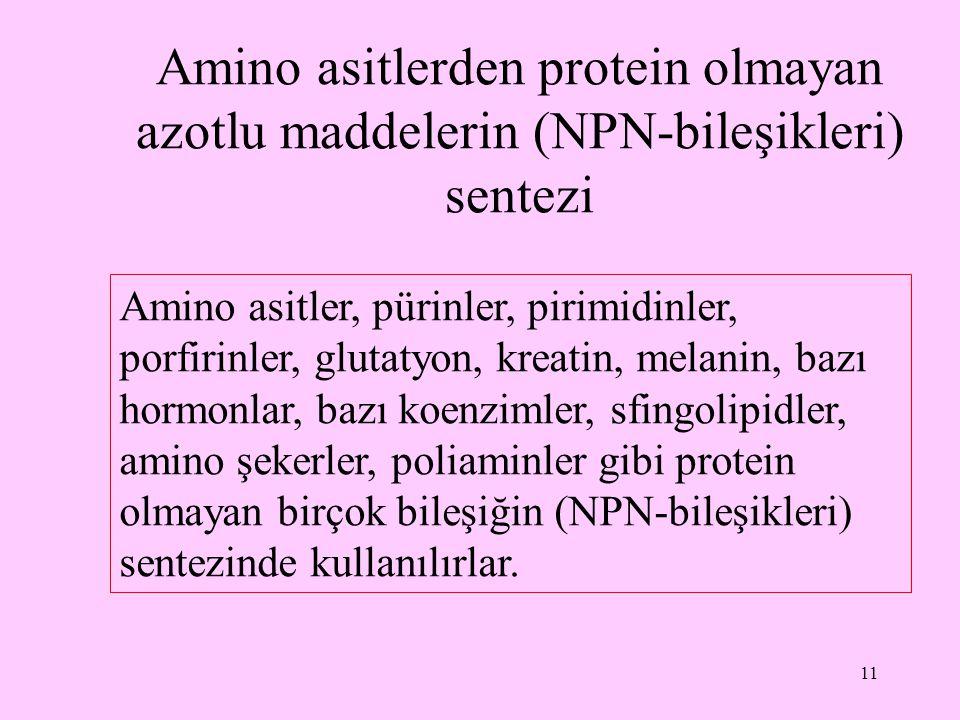 Amino asitlerden protein olmayan azotlu maddelerin (NPN-bileşikleri) sentezi