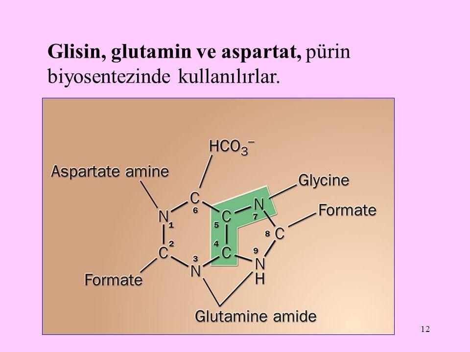 Glisin, glutamin ve aspartat, pürin biyosentezinde kullanılırlar.