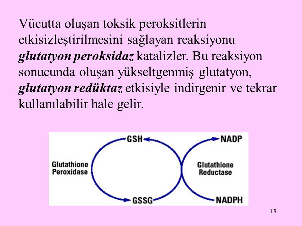 Vücutta oluşan toksik peroksitlerin etkisizleştirilmesini sağlayan reaksiyonu glutatyon peroksidaz katalizler.