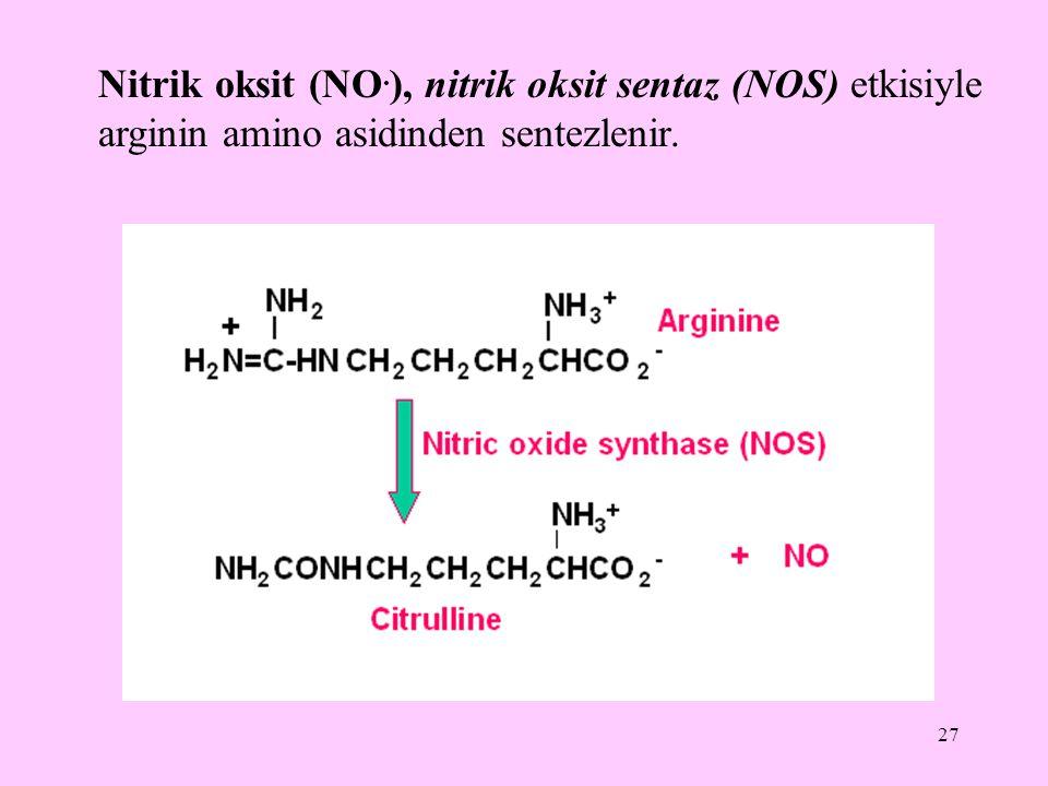 Nitrik oksit (NO.), nitrik oksit sentaz (NOS) etkisiyle arginin amino asidinden sentezlenir.