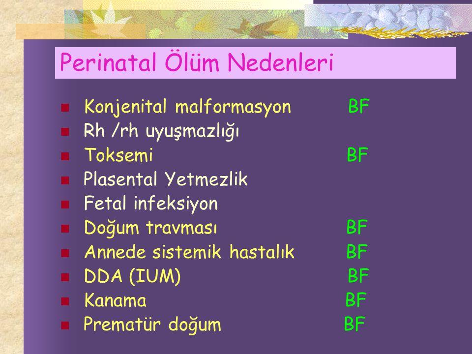 Perinatal Ölüm Nedenleri
