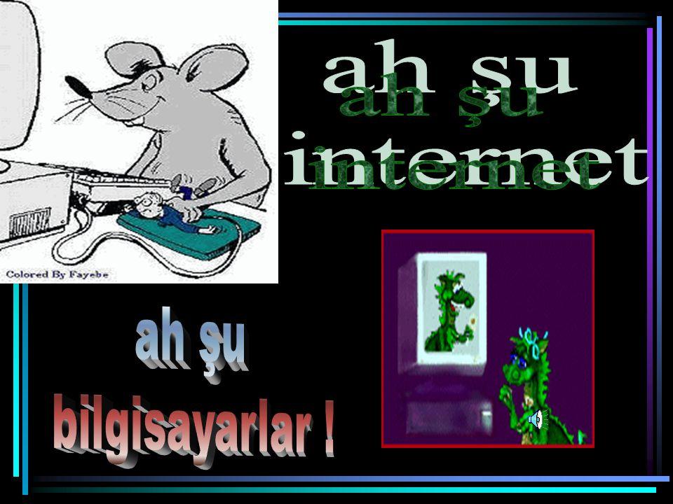 ah şu internet ah şu bilgisayarlar !
