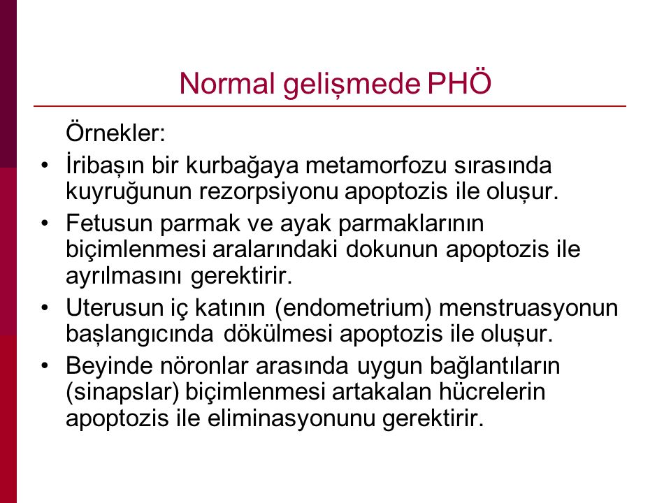Normal gelişmede PHÖ Örnekler:
