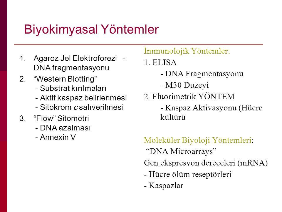 Biyokimyasal Yöntemler
