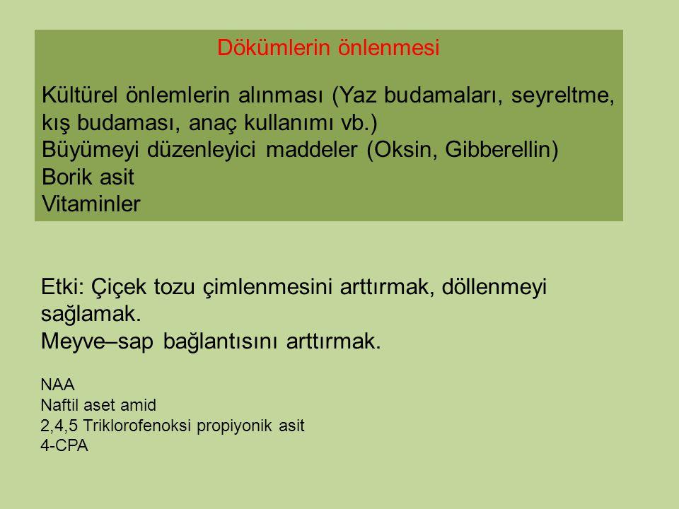 Büyümeyi düzenleyici maddeler (Oksin, Gibberellin) Borik asit