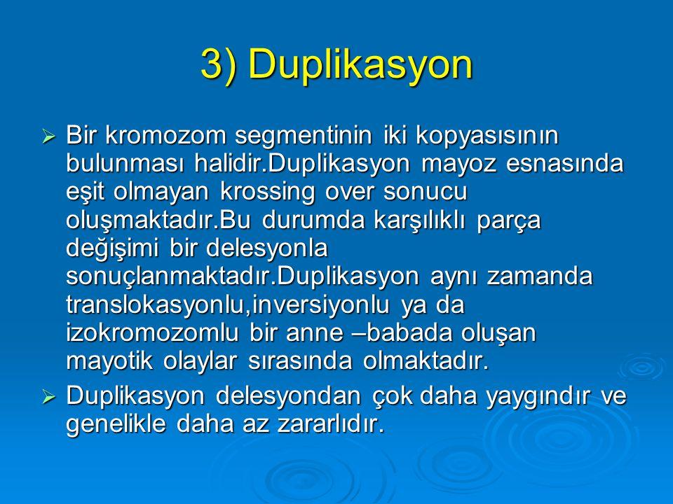 3) Duplikasyon