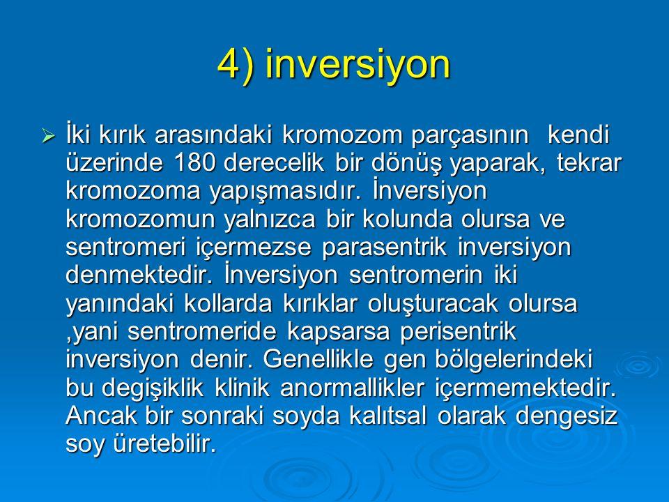 4) inversiyon
