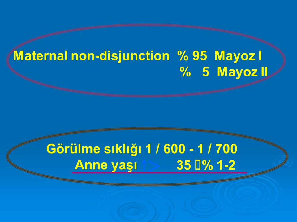 Maternal non-disjunction % 95 Mayoz I
