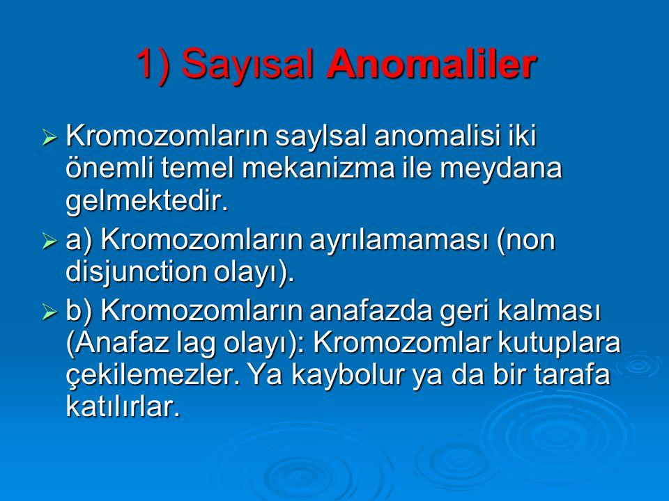 1) Sayısal Anomaliler Kromozomların saylsal anomalisi iki önemli temel mekanizma ile meydana gelmektedir.