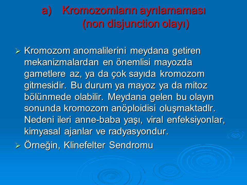 Kromozomların ayrılamaması (non disjunction olayı)