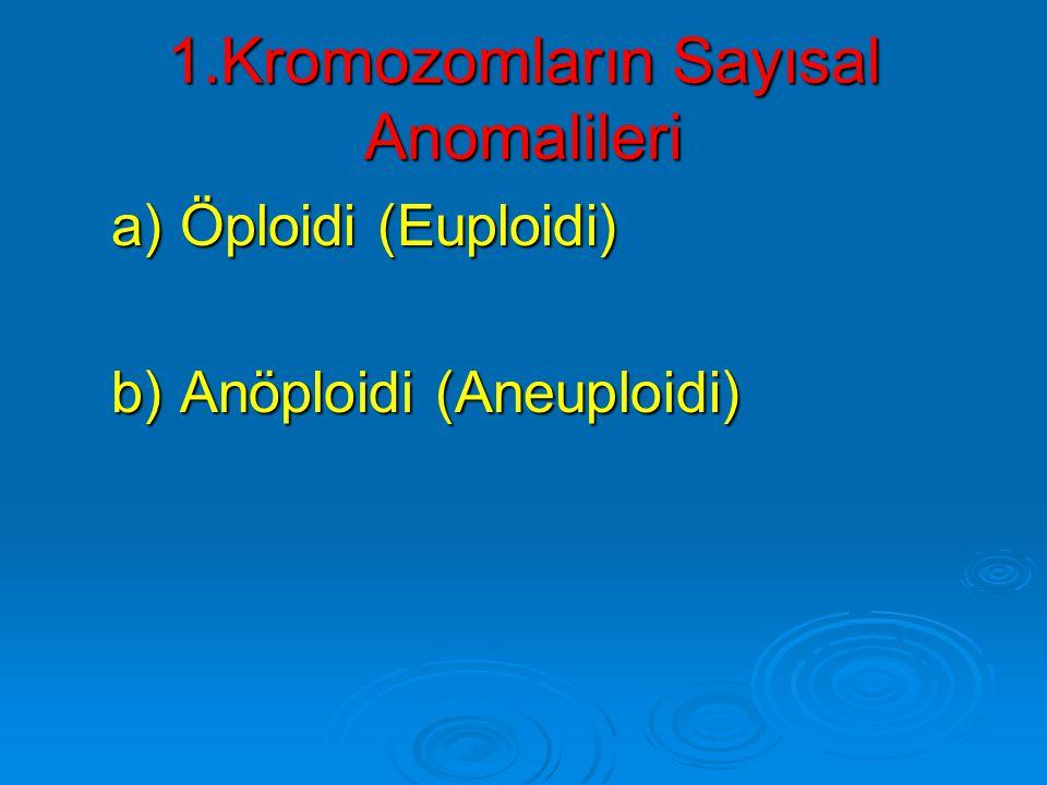 1.Kromozomların Sayısal Anomalileri