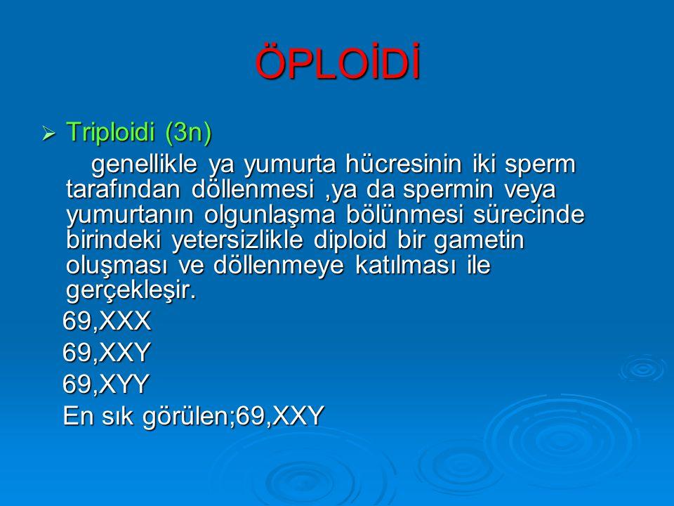 ÖPLOİDİ Triploidi (3n)