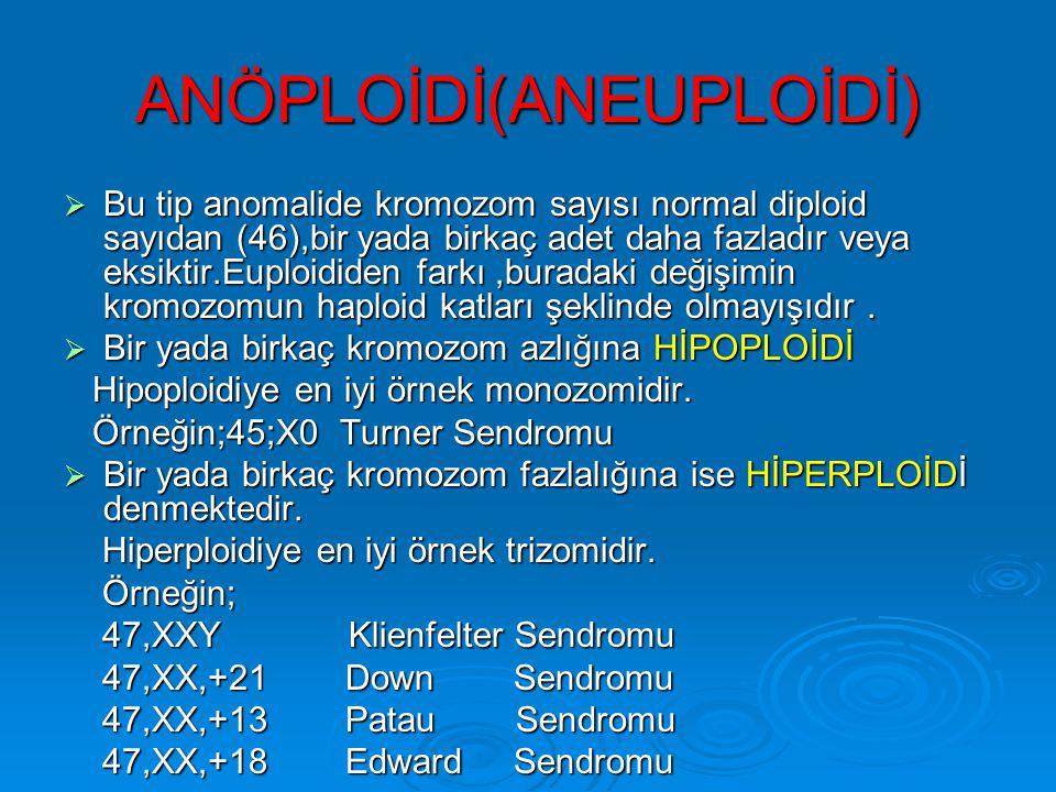 ANÖPLOİDİ(ANEUPLOİDİ)