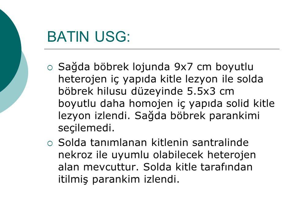BATIN USG: