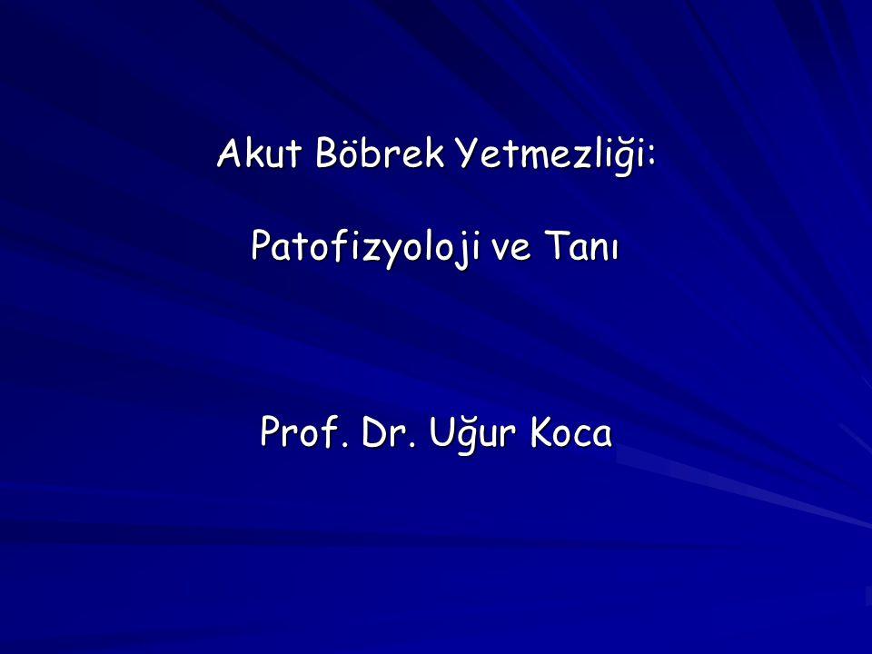 Akut Böbrek Yetmezliği: Patofizyoloji ve Tanı Prof. Dr. Uğur Koca