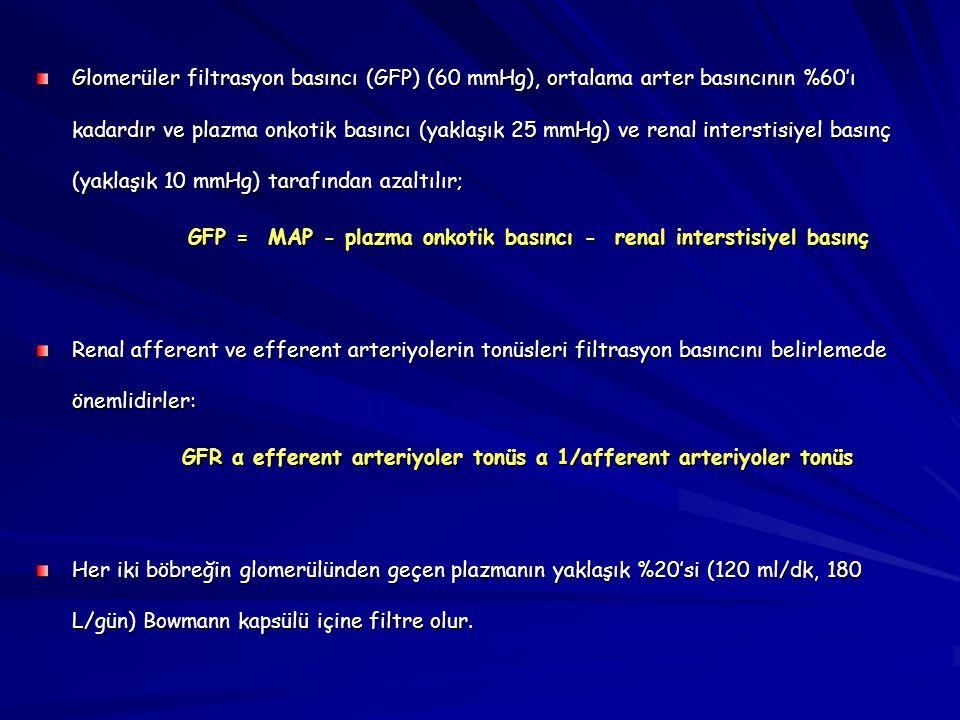 Glomerüler filtrasyon basıncı (GFP) (60 mmHg), ortalama arter basıncının %60'ı kadardır ve plazma onkotik basıncı (yaklaşık 25 mmHg) ve renal interstisiyel basınç (yaklaşık 10 mmHg) tarafından azaltılır;