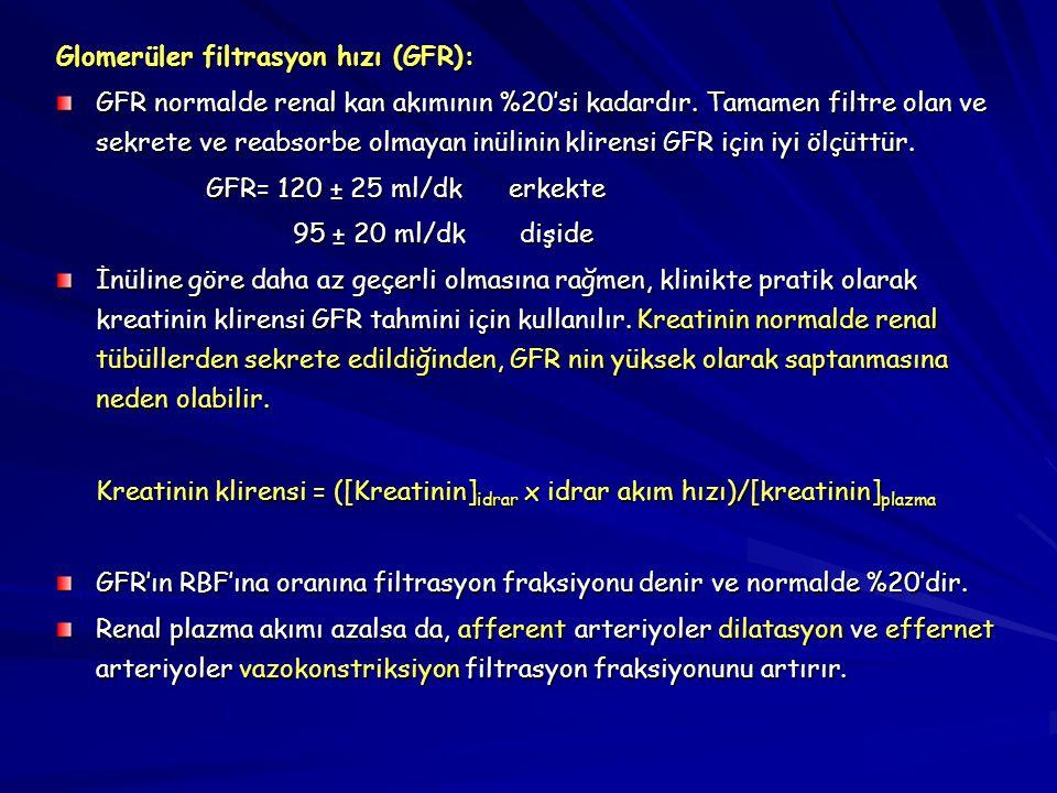 Glomerüler filtrasyon hızı (GFR):