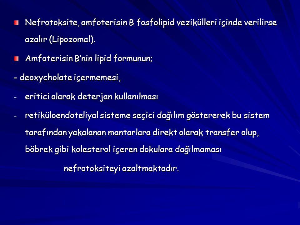 Nefrotoksite, amfoterisin B fosfolipid vezikülleri içinde verilirse azalır (Lipozomal).