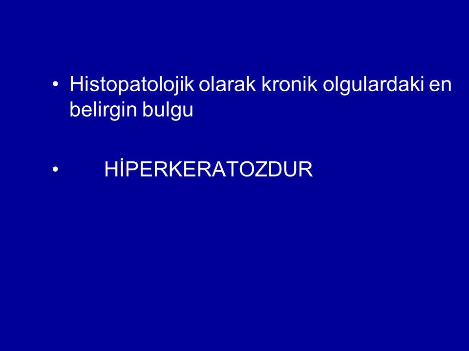 Histopatolojik olarak kronik olgulardaki en belirgin bulgu
