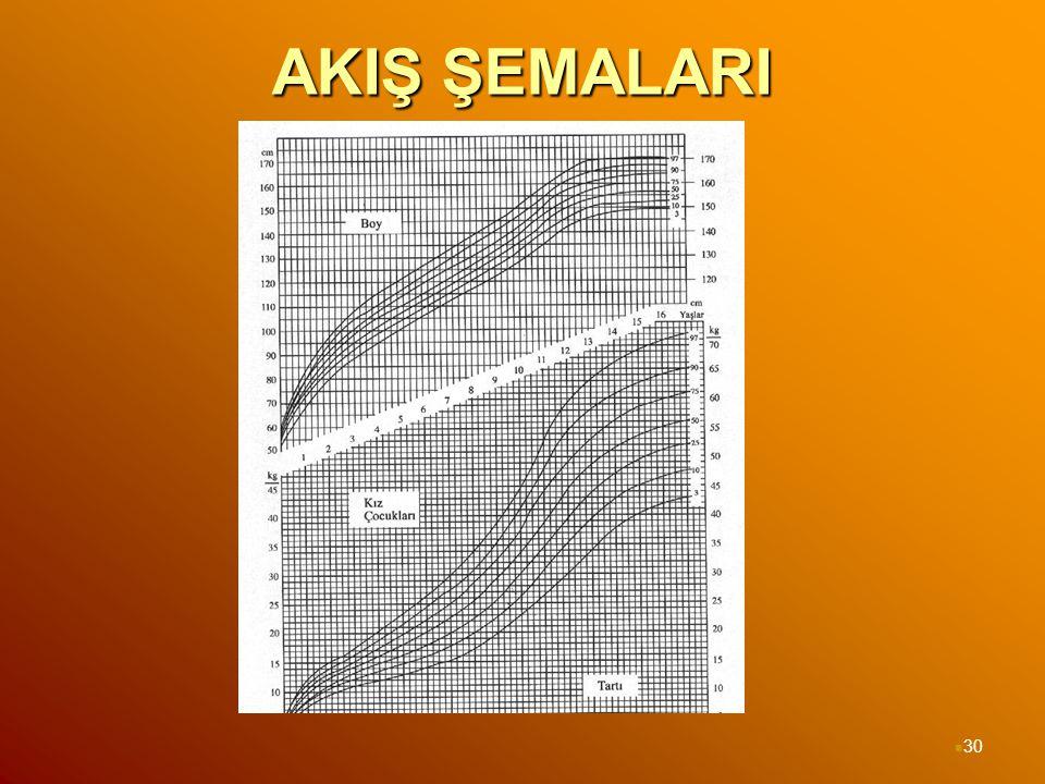 AKIŞ ŞEMALARI