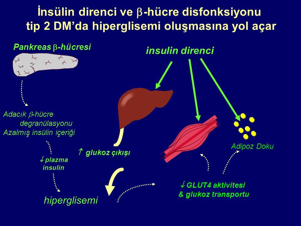 İnsülin direnci ve -hücre disfonksiyonu