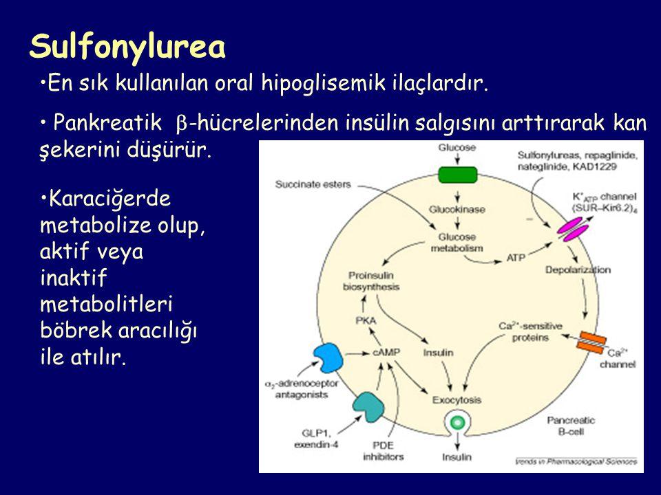 Sulfonylurea En sık kullanılan oral hipoglisemik ilaçlardır.