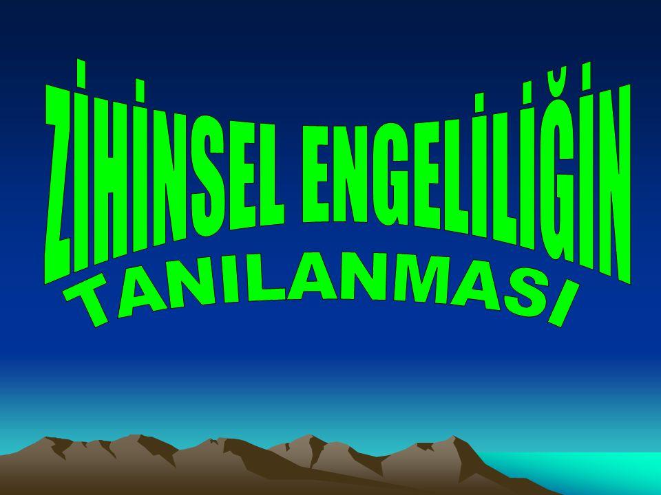 ZİHİNSEL ENGELİLİĞİN TANILANMASI