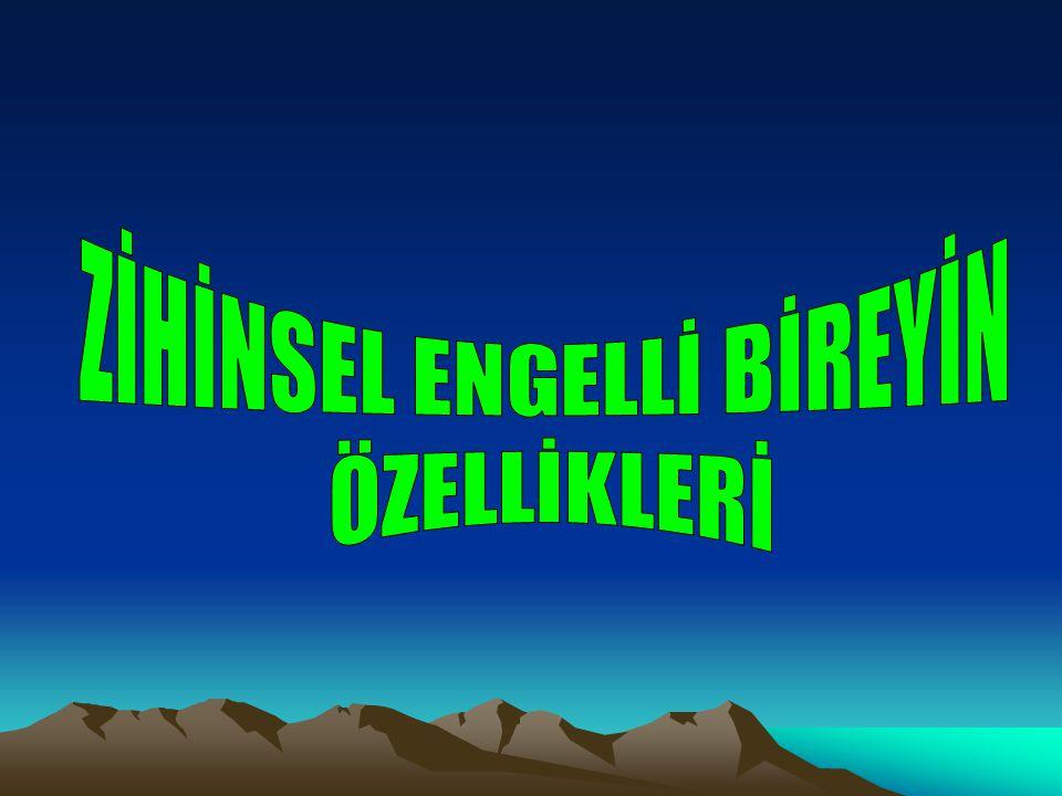 ZİHİNSEL ENGELLİ BİREYİN