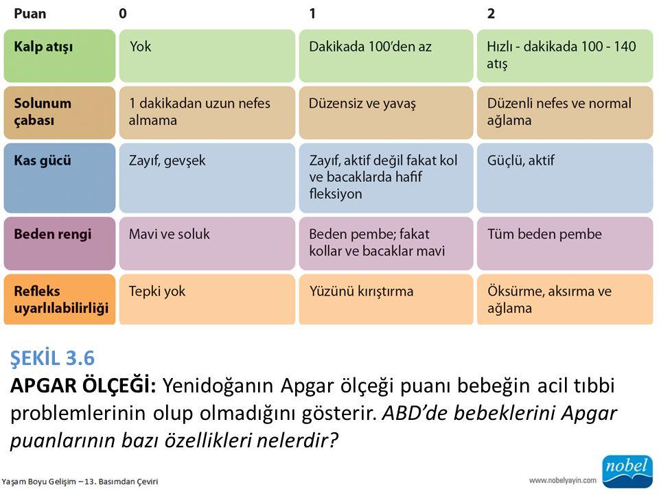 ŞEKİL 3.6