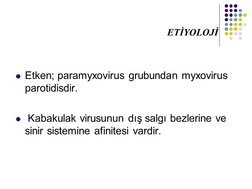 Etken; paramyxovirus grubundan myxovirus parotidisdir.