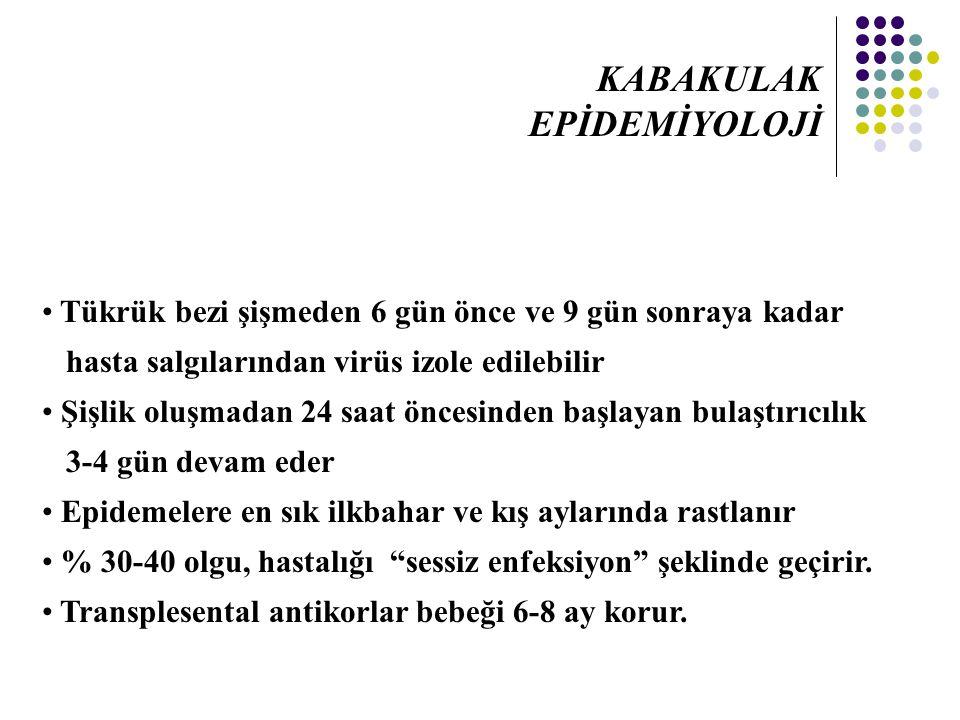 KABAKULAK EPİDEMİYOLOJİ