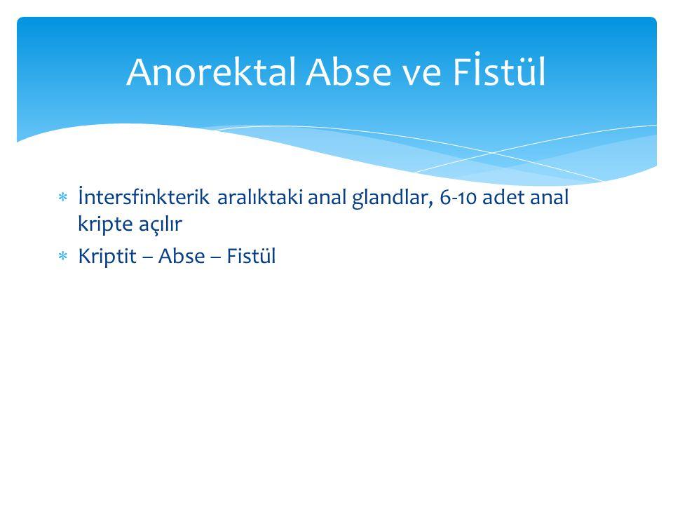 Anorektal Abse ve Fİstül