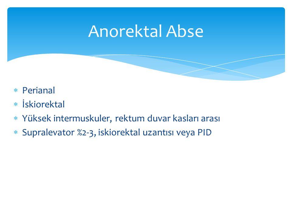 Anorektal Abse Perianal İskiorektal