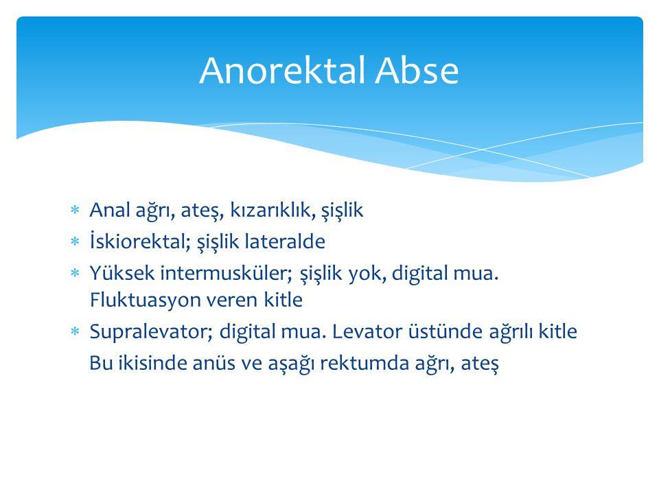 Anorektal Abse Anal ağrı, ateş, kızarıklık, şişlik