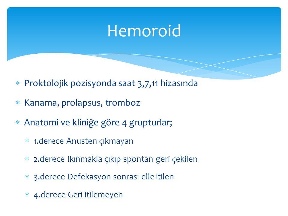 Hemoroid Proktolojik pozisyonda saat 3,7,11 hizasında