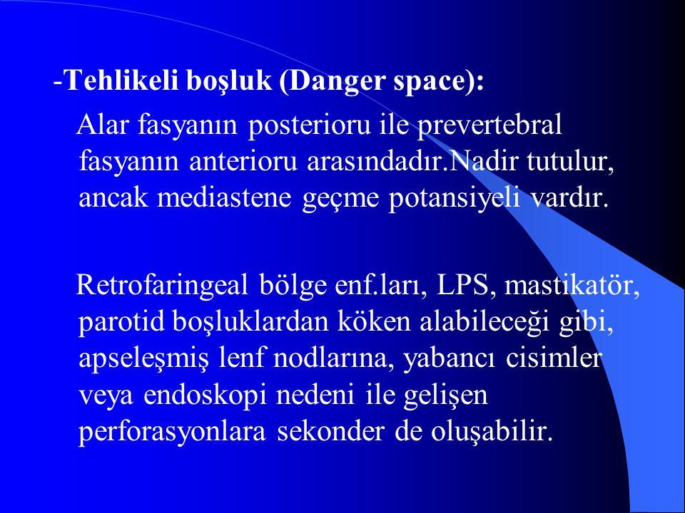 -Tehlikeli boşluk (Danger space):