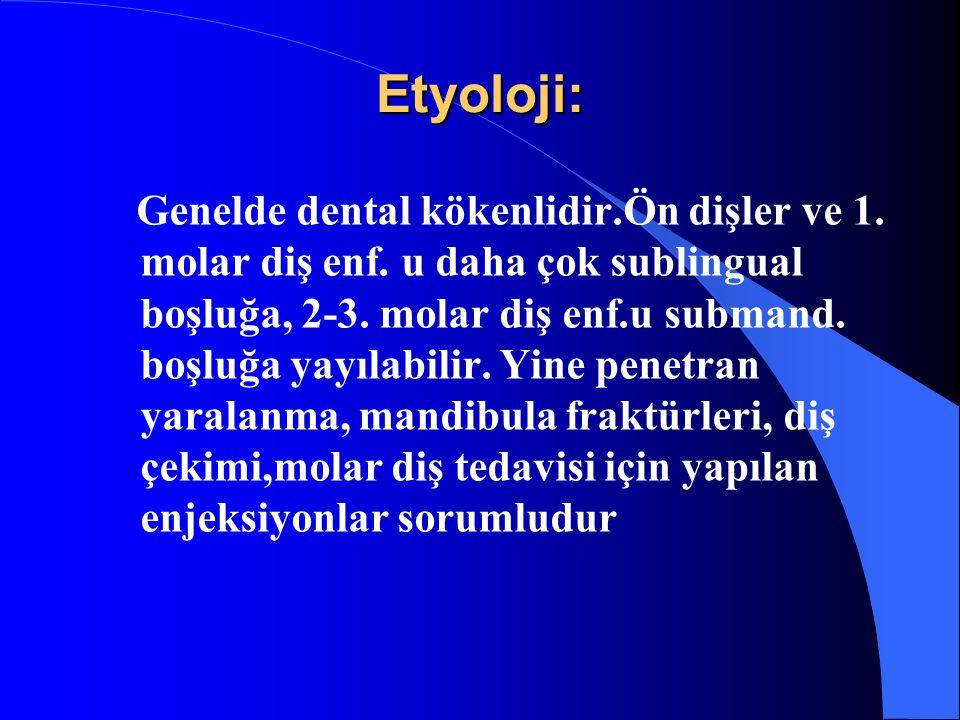 Etyoloji: